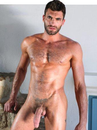 Ator Porno Vito Gallo