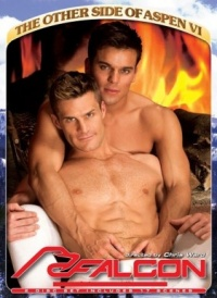 DVD Gay Other side of Aspen VI