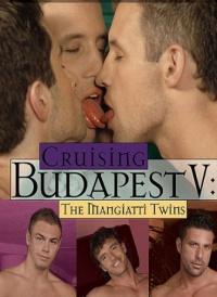 Cruising Budapest 5