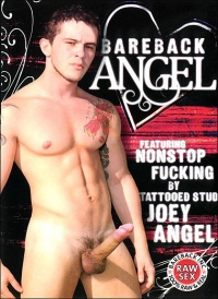 DVD Gay Bareback Angel