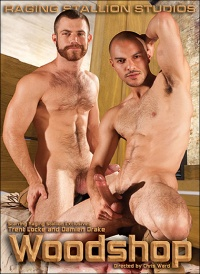 DVD Gay Woodshop