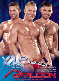 DVD Gay VIP: After Hours
