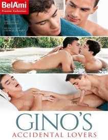 DVD gay - Gino Accidental Lovers